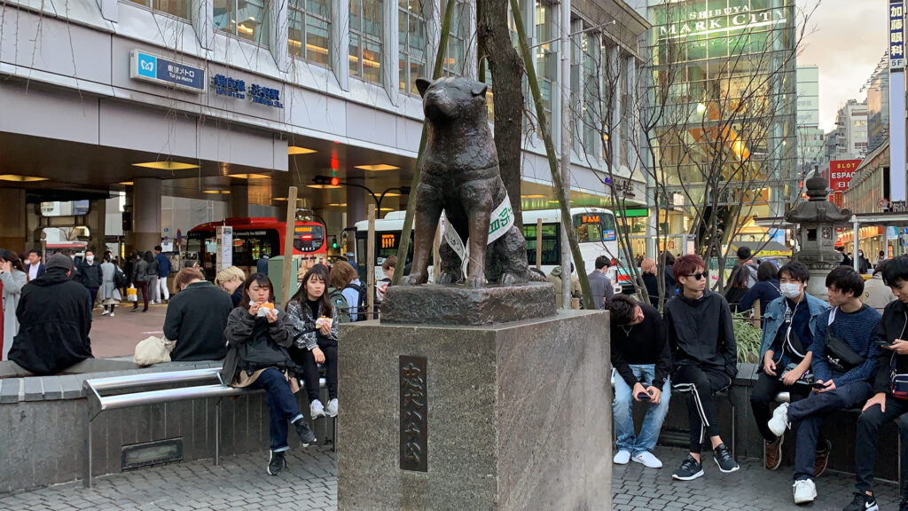 Visit Tokyo under 24 hours- One Day Trip Itinerary Hachiko in Shibuya