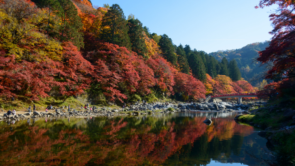 Best place to live in japan for aichi prefecture