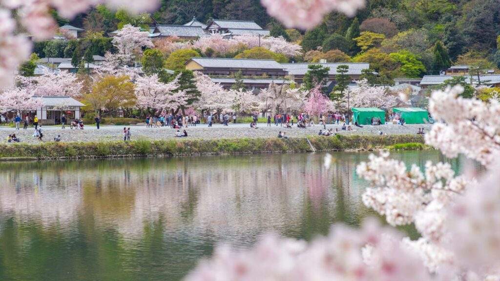 Japan scene Useful Japanese travel phrases for your everyday life in Japan