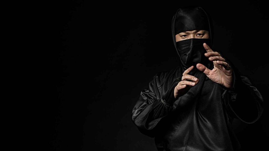 Where did ninjas come from facts about ninjas